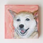 ナチュラルピンク犬