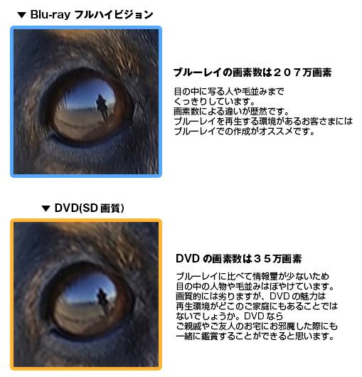 DVD-Blu-ray違い2