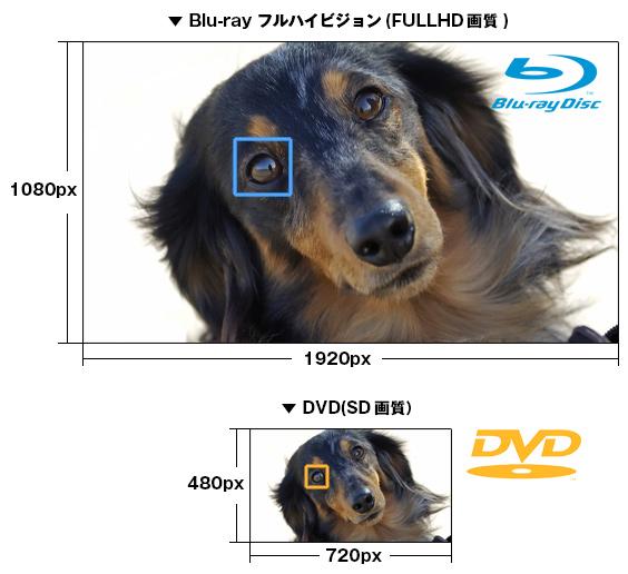DVD-Blu-ray違い