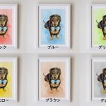 カラーサンプル水彩画YUMI