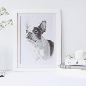 デッサン犬サンプル3