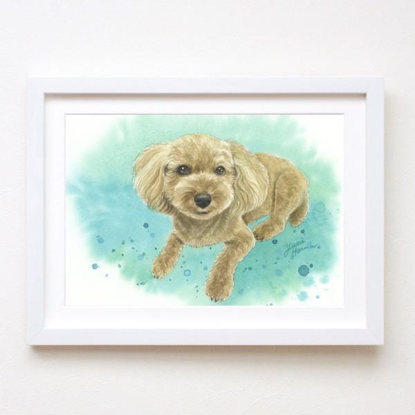水彩画 犬 yumiトイプードル
