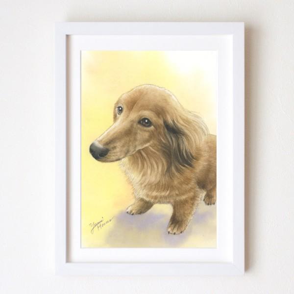 水彩画 犬 yumiダックス