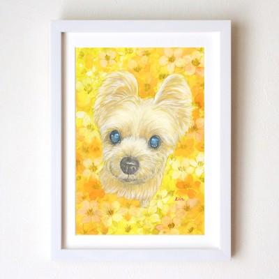 ペット肖像画 水彩画 犬