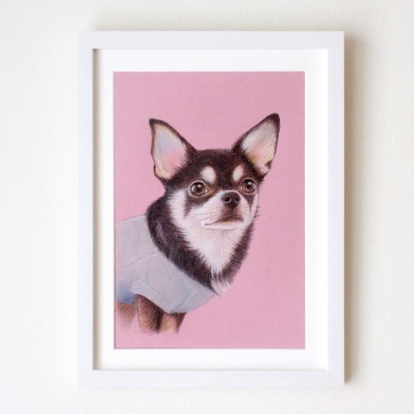 色鉛筆画犬
